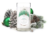 winter fragrant jewels candle